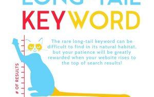 SEO Long Tail: czy frazy z długiego ogona są bardziej skuteczne?