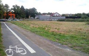 """Wolsztyński ogród botaniczny – czy to tylko """"idea fixe""""?"""