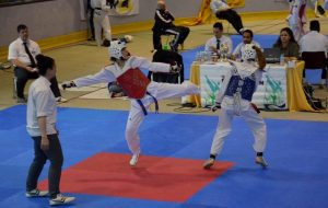 Międzynarodowe zawody w Taekwondo Olimpijskim